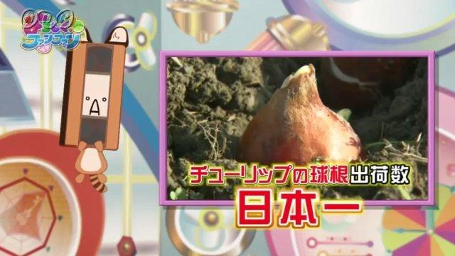 【たつき監督×NHK】『よろしく!ファンファン』第5回 感想 地域の産業について学ぶ