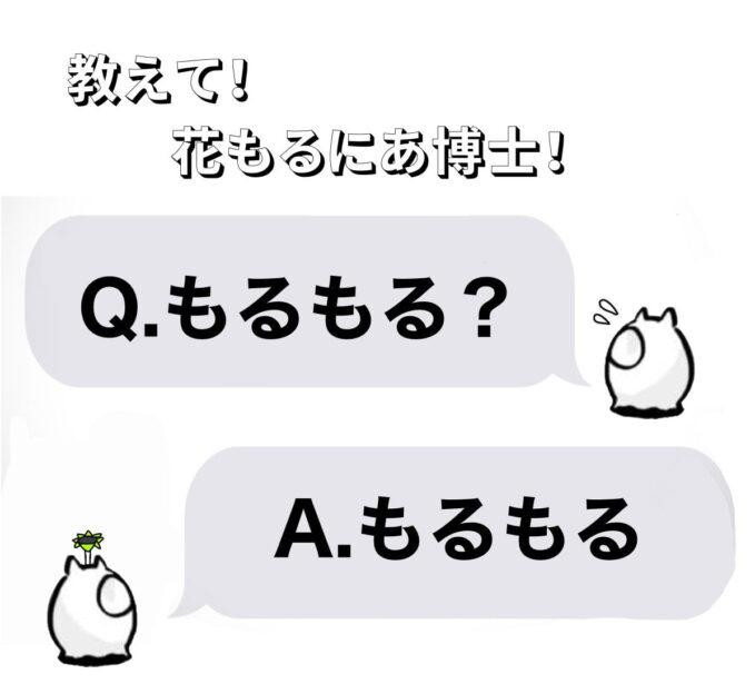 Q.もるもる?